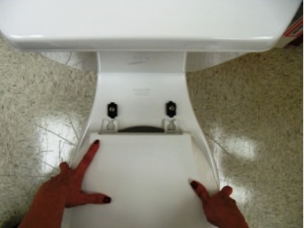 Terrific Replace The Hinges On A Cachet Quiet Close Q3 Toilet Seat Pdpeps Interior Chair Design Pdpepsorg